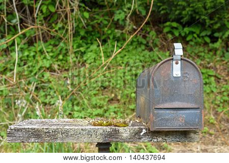 Weathered mailbox and pedestal with an overgrown background
