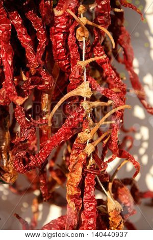 close up shot of dried red peppers