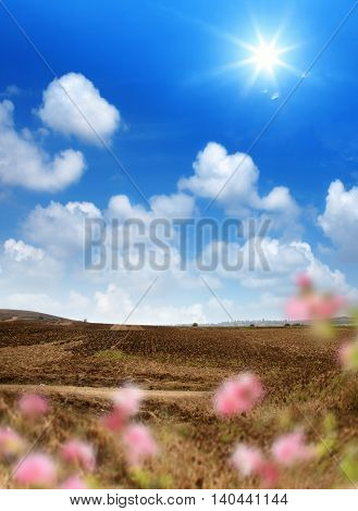landscape shot of plowed field over sunny sky