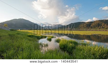 Snake River morning grassy reflections under cumulus clouds at Alpine Wyoming USA
