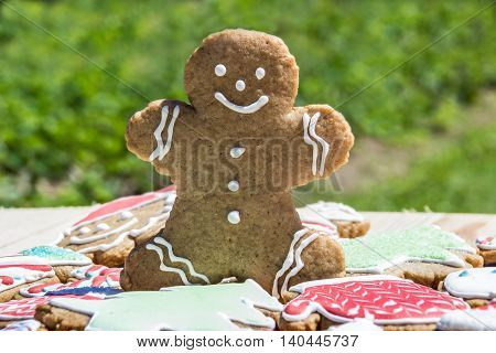 Beautiful homemade gingerbread cookie man with smile