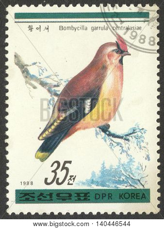 MOSCOW RUSSIA - CIRCA APRIL 2016: a post stamp printed in the NORTH KOREA shows a bird Bombycilla garrulus centralasiae the series