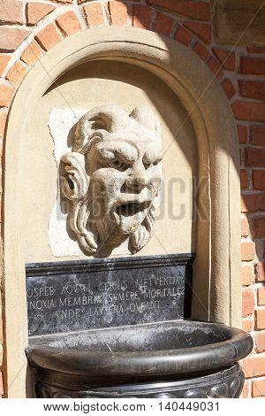 Details of fountain with mascaron in the courtyard of Collegium Maius Old Town Krakow Poland.
