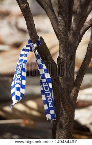 Fire Aftermath Tasmania