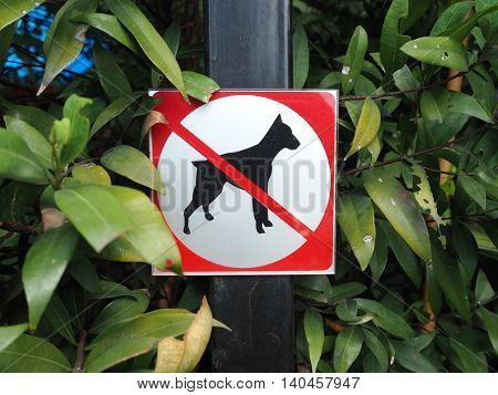 No dog sign. Dog not allowed in garden area.
