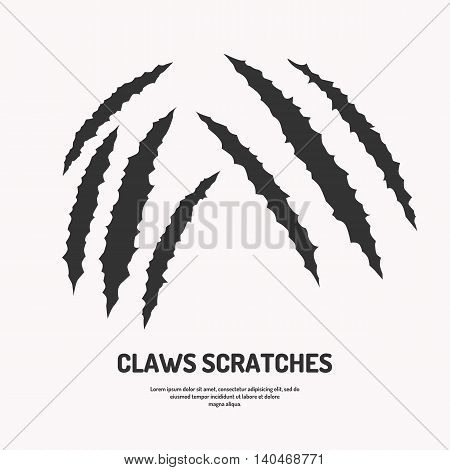 Isolated vector claws scratches. Silhouette of wounds and cuts.