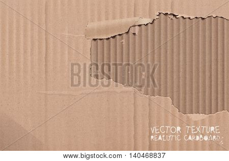 Torn Cardboard Texture