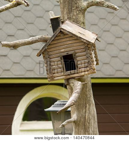 Wooden feeders for birds on a tree