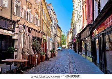 Old Ljubljana cobbled street view capital of Slovenia