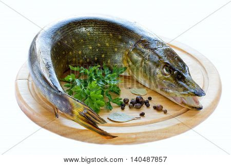 Pike fish on a wooden board isolated on white background