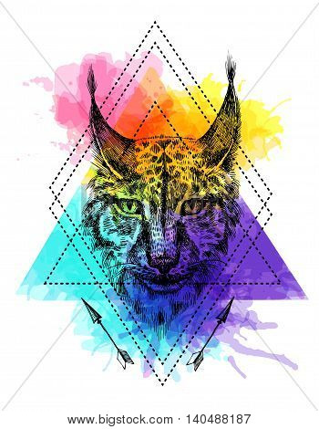 Beautiful hand drawn vector illustration sketching of lynx. Tattoo style drawing. Use for postcards, print for t-shirts, posters.
