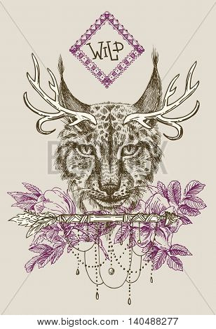 Beautiful hand drawn vector illustration sketching of lynx. Boho style drawing. Use for postcards, print for t-shirts, posters.