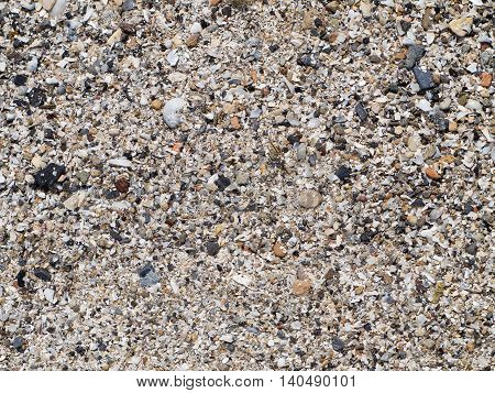 The surface of the sea coast from the wreckage of shells and small pebbles on the beach closeup
