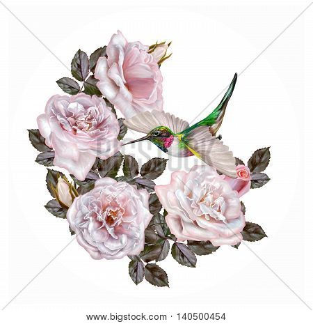 Garland of pale pink and pastel roses. Little bright bird hummingbird in flight circle round shape painting. Isolated on white background.