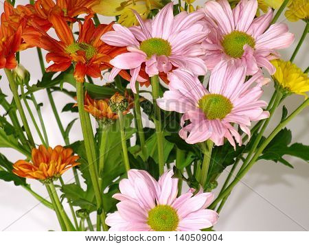 A Bunch Of Pink, Yellow And Red Flowers
