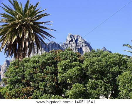 Table Mountain From Clifton Beach, Cape Town South Africa