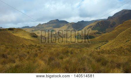 View of Cayambe Coca National Park in Ecuador