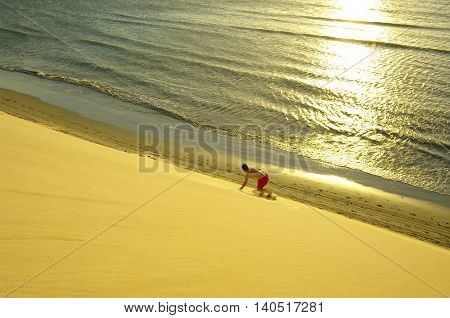 Jericoacoara, Man Sandboarding On The Dune In Front Of The Ocean.