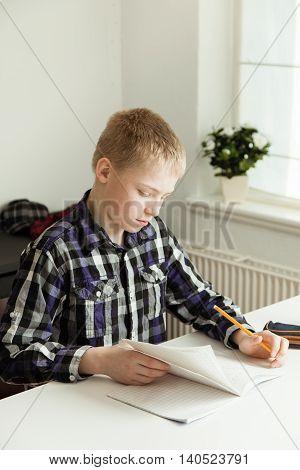 Young Teenage Boy Sitting At Desk Doing Homework