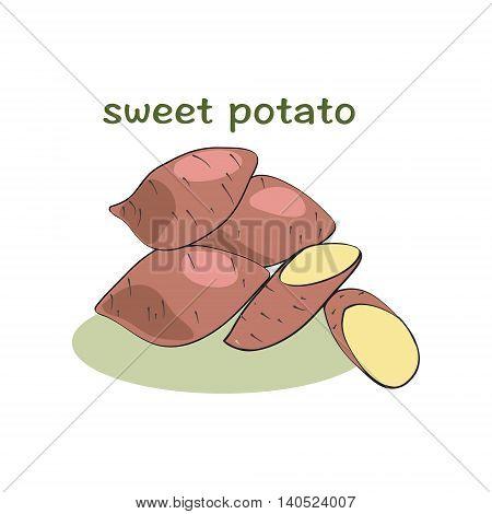 Sweet potatoes isolated on white background illustration vector