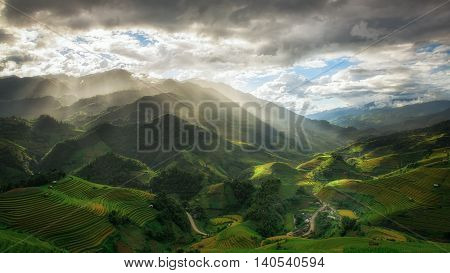 Rice fields on terraced in rainy season at Mu cang chai Vietnam. Rice fields prepare for transplant at Northwest Vietnam