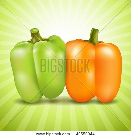 Orange and green sweet pepper on colorful background. Vector illustration.