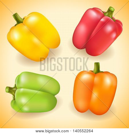 Collection of colorful sweet pepper. Vector illustration.