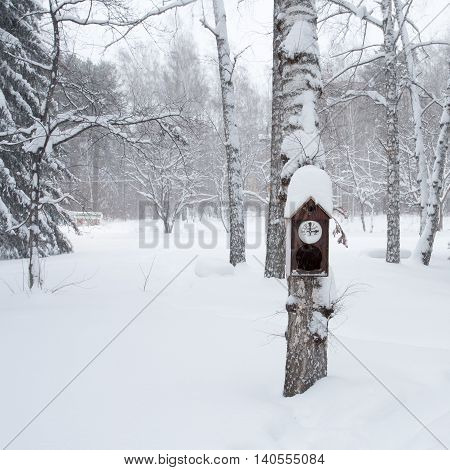 Birdhouse in the winter forest photo for you
