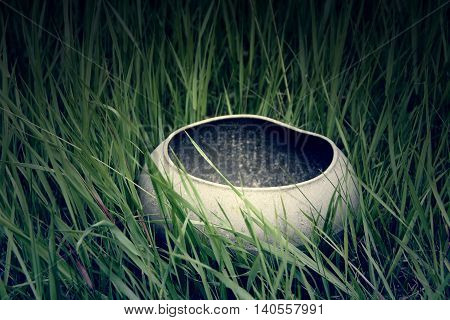 empty cauldron on the grass on the Halloween.