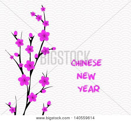 Blossom chinese new year and background for design