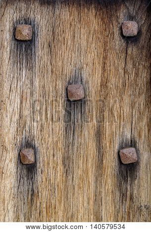 Section of ancient wooden door with five rusty metal nail heads studded across textured wood like a domino