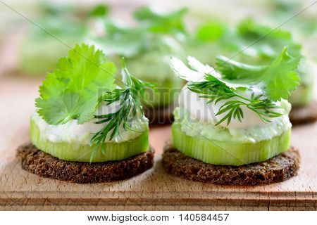 Cucumber and whipped with spring herbs feta cheese mini snacks seasoned with cilantro and dill