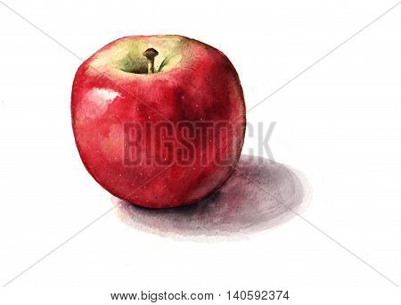 A shiny red apple on a white background.