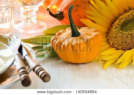 Thanksgiving dinner setting with sunflowers and squashes