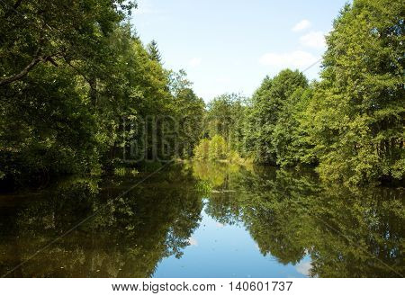 Wild european Chocina river in summer and edges thickly covered with old deciduous trees in Bory TucholskiePoland. Horizontal view.