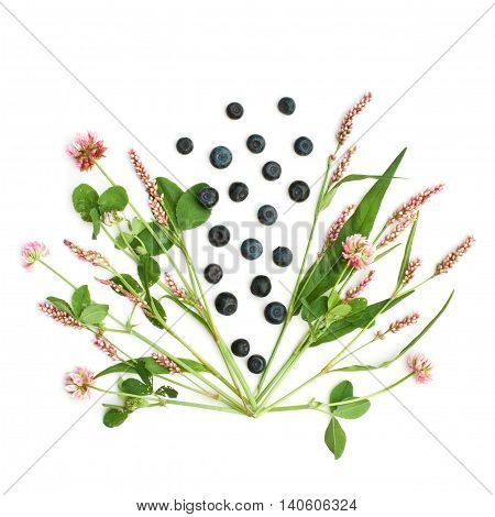 Isolated meadow flowers and bilberries on a white background