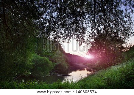 Beautiful river in a dense forest lit by rays of sun