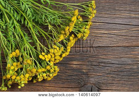 Bouquet of tansy flowers on a old wooden background top view. Medicinal plants