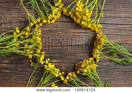 Bunch of tansy on a wooden background top view. Medicinal plants