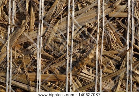 Macro photo of bound straw of a bale of straw.