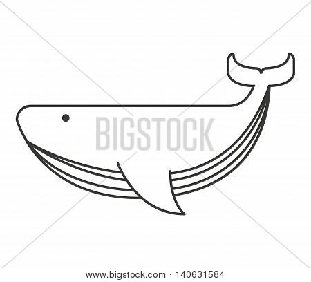 whale big sea icon vector isolated graphic