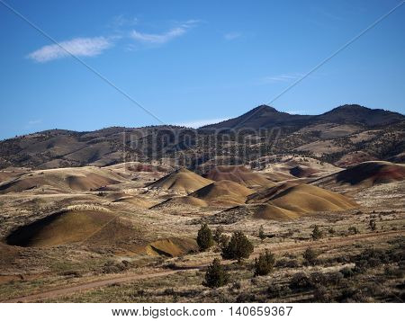 Small hills pop out of the ground in the Painted Hills of Oregon.