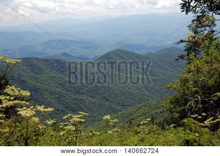 Smoky Mountains panorama of ridges with the characteristic blue-like smoky mist that surrounds them.