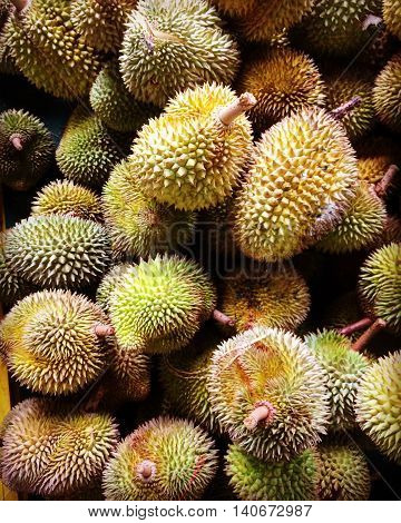 Durians at the Durian Festival 2016 in Kuala Lumpur