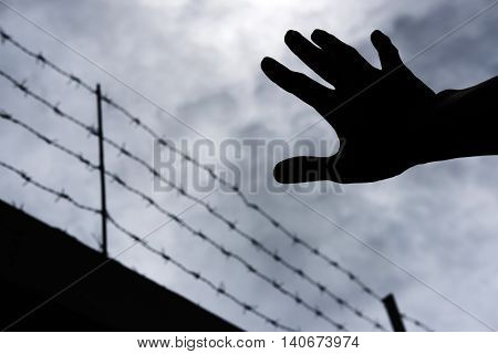 Silhouette hand extending to the sky with defocus barbwire, on gloomy overcast sky