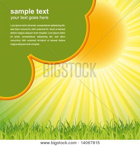 Fondo de naturaleza verde verano