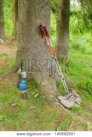 Pair of trekking poles trekking leather boots Gas cartridge camping stove with stainless steel pot and stainless steel mug under a big spruce