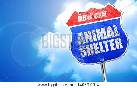 animal shelter, 3D rendering, blue street sign