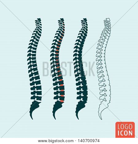 Spine icon. Human spine diagnostic symbol. Vector illustration