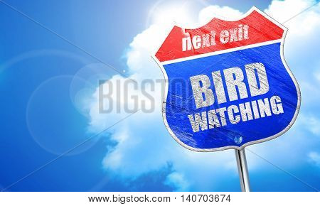 bird watching, 3D rendering, blue street sign